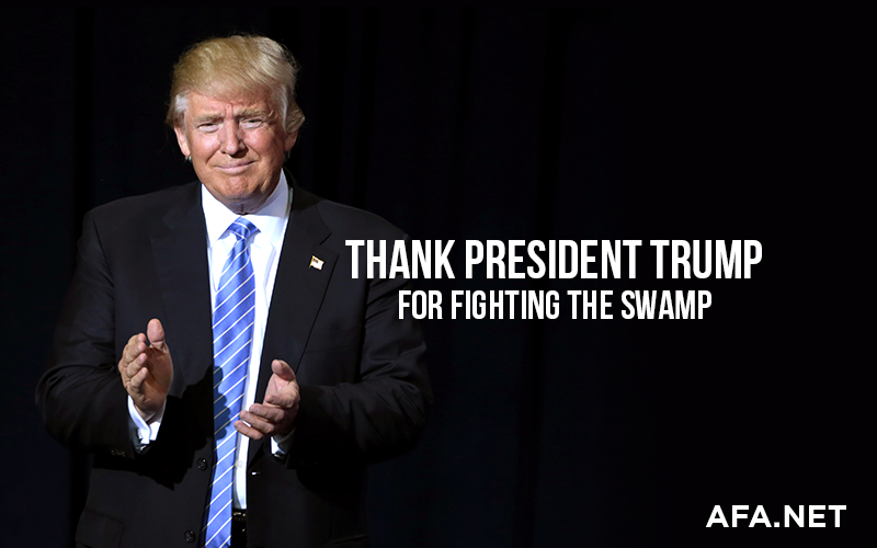 Thank President Trump for Draining the Swamp