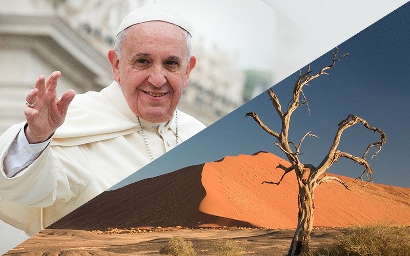 The Pope's View of the Environment