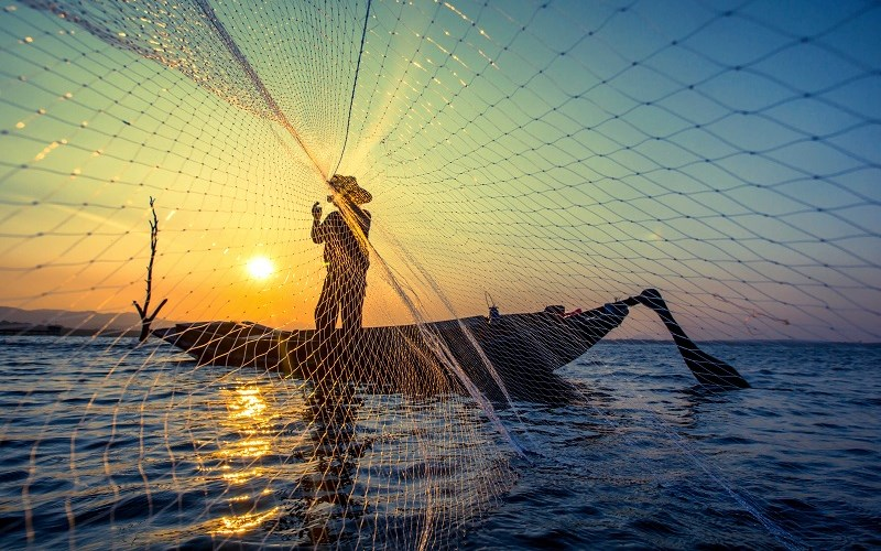 Special Prosecutors and Their Fishing Nets