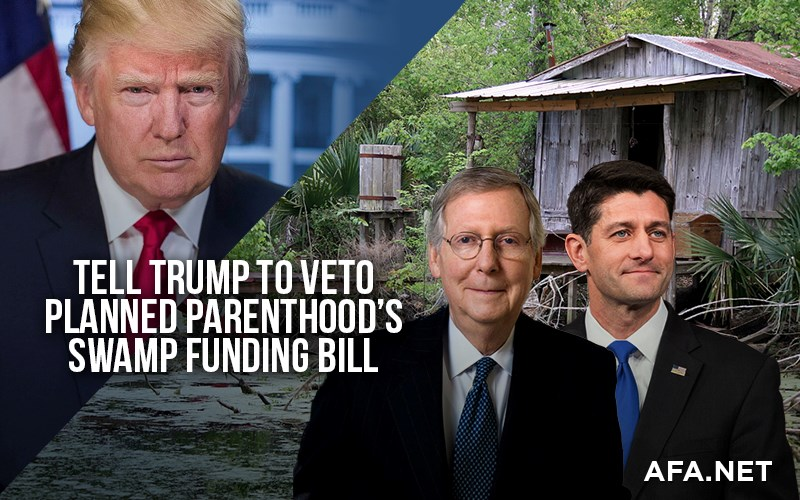 Urge the president to veto any bill that funds Planned Parenthood