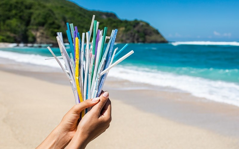 All You Need to Know About Straws and the Environment