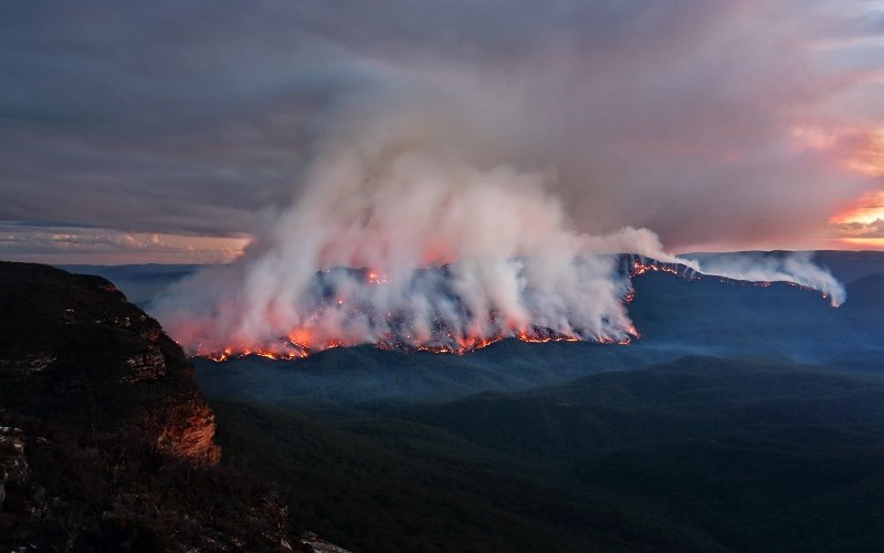 Australia's Fires: Caused by Bad Forestry and Arson, Not Global Warming